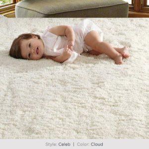 Shaw Celeb Carpet